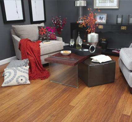 Ember Bamboo Flooring